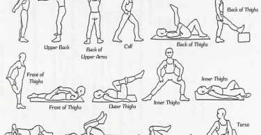 Various Types Of Stretches