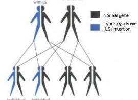 lynch-syndrome